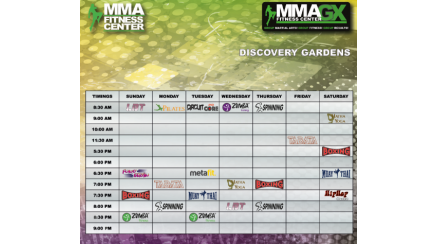 MMA Fitness Center - Discovery Gardens